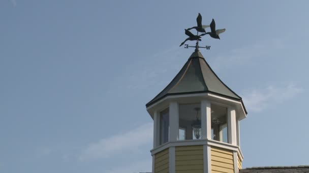Weather vane rooster (2 of 2)