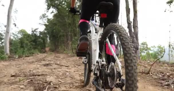 Žena cyklistka na horské vrchol lesní stezka