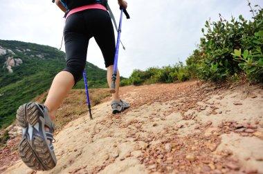 Woman hiker hiking