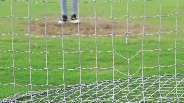 Fussballnetz Mit Gras