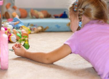 Child and budgie on floor