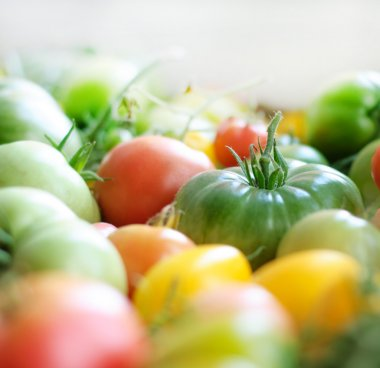 Yellow, red and green tomatoes