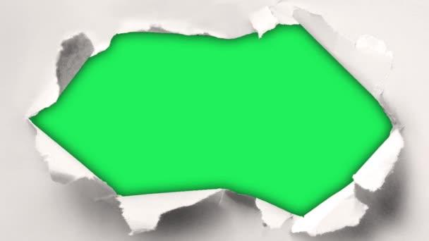 Animovaný rámový papír natržený na zeleném pozadí.