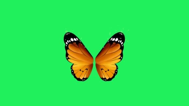 Animace oranžová fantasy styl motýl křídla na zeleném pozadí.