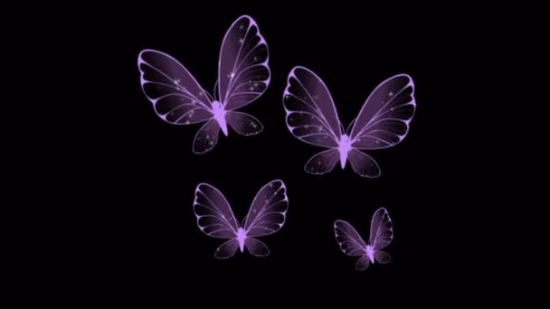 Animation purple butterfly swarm on black background.