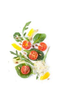 Fresh spring salad - modern artistic composition