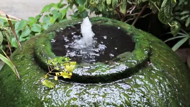 Obří sklenici fontána zelené řasy povrch