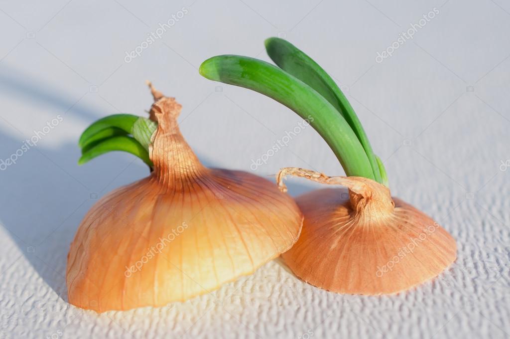Sliced Onion Tops