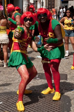 Revellers on Rio's largest carnival