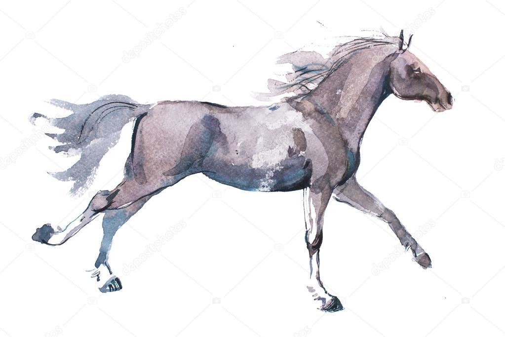 рисунки лошадей фото
