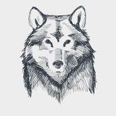 Vlčí hlavy grunge ručně kreslenou skica vektorové ilustrace