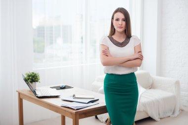 Beautiful successful business woman