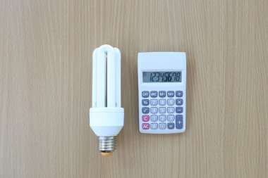 Fluorescent Lamps placed near calculator.