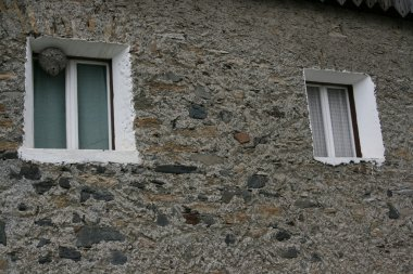 Window with wasp's nest
