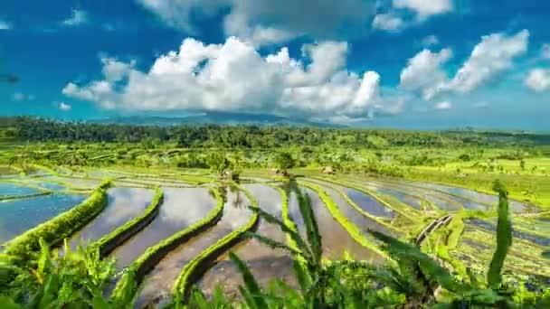Pohybující mračna nad rýžové terasy