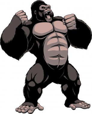 The fierce gorilla shouts