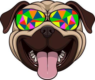Funny kind pug