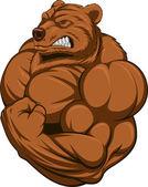 silná medvěd