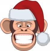 Hlava šimpanz v čepici