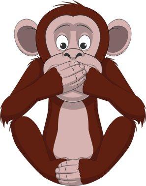 Funny little monkey