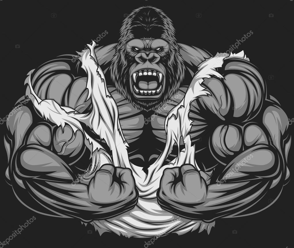 silverback gorilla muscles drawing images galleries with a bite. Black Bedroom Furniture Sets. Home Design Ideas