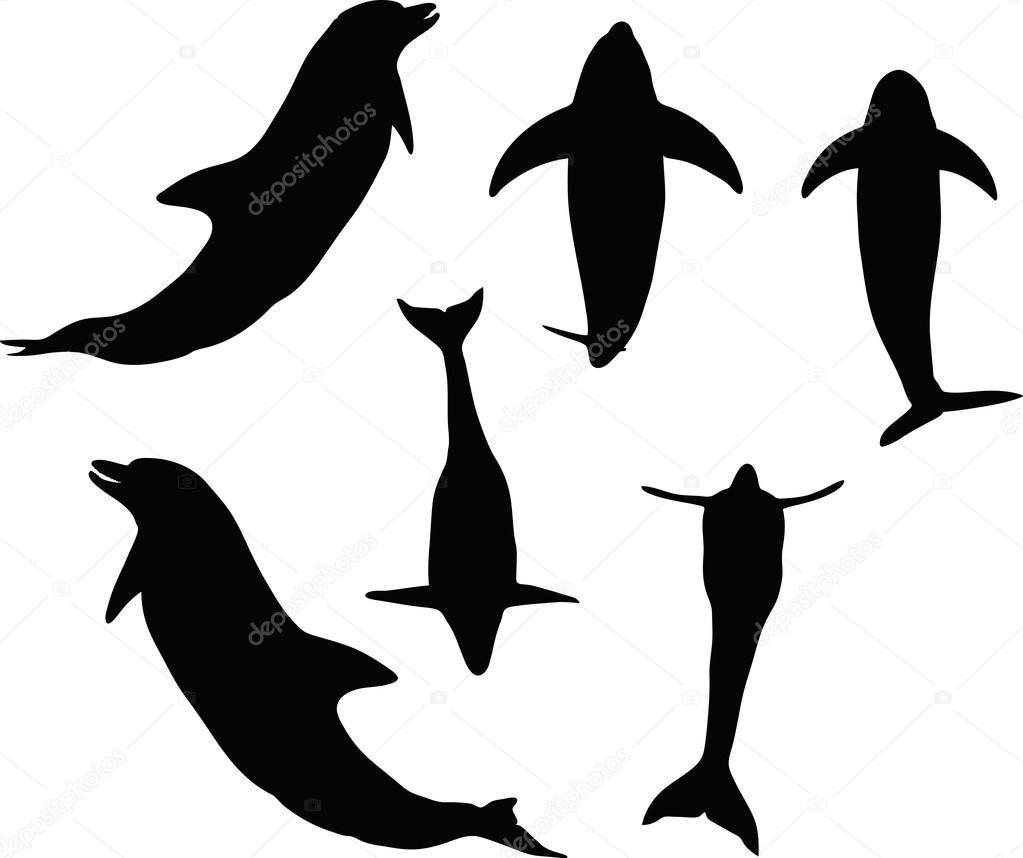 silhueta golfinho vetor de stock istanbul2009 78786372