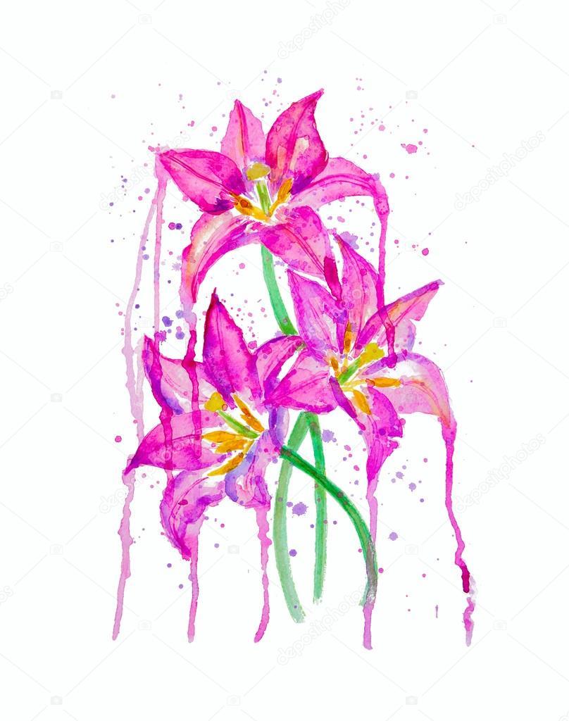 Fiori di giglio bella foto stock superson 107922128 disegni ad acquerello di bella lily flowers foto di superson izmirmasajfo