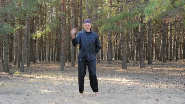 REM Plugatar.Master wushu, wu hsing (pět elementů) z Ukrajiny