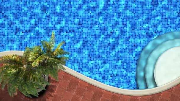 Entspannung am Pool mit Palme