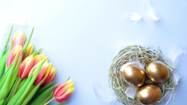 Kosár húsvéti dekoráció: Arany tojás kosárban tavaszi tulipánnal, fehér toll pasztell kék háttérrel. Gratuláló húsvéti terv. Felülnézet