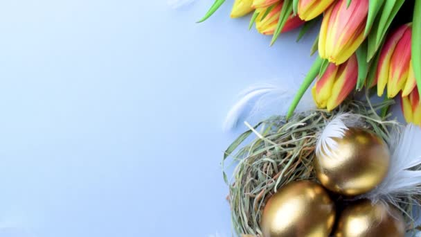 Goldene Ostereier im Korb mit Frühlingstulpen, weiße Federn auf pastellblauem Hintergrund in froher Osterdekoration. Konzept für Frühjahrsferien von oben