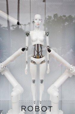 Robot display at store
