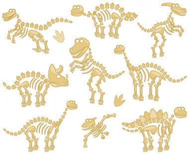 Vector Collection of Dinosaur Fossils or Bones