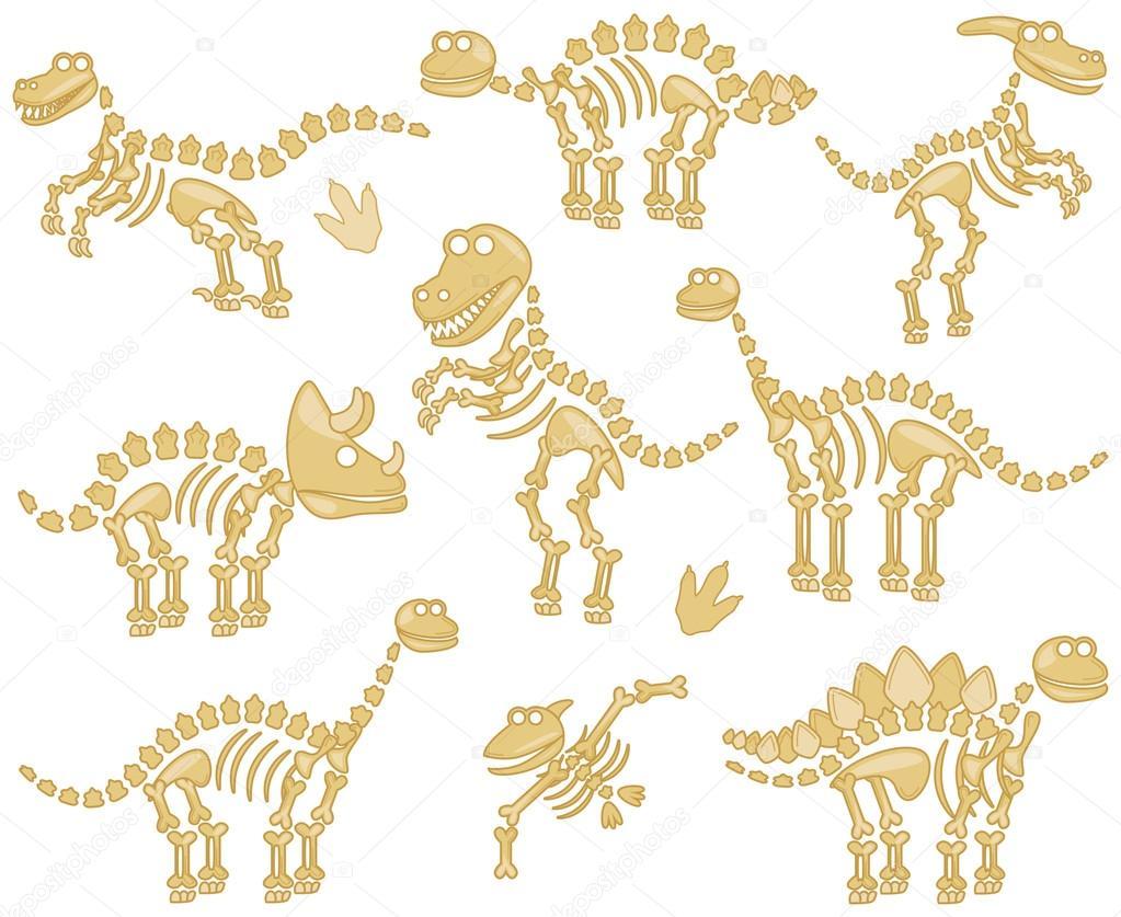 Vector Collectie Van Dinosaurus Fossielen Of Botten