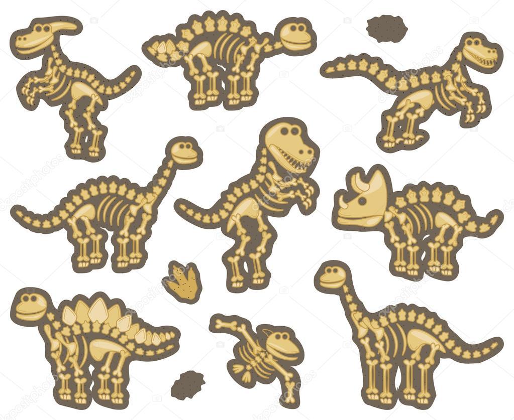 Colección De Vector De Fósiles De Dinosaurios O De
