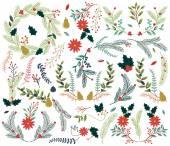 Fotografie Vektor Sammlung von Vintage-Stil handgezeichnete Weihnachten Urlaub Blumen
