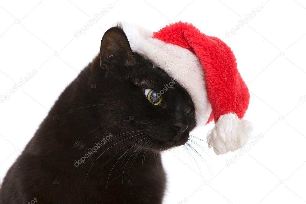 schwarze katze santa s e weihnachten katze weihnachten. Black Bedroom Furniture Sets. Home Design Ideas