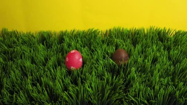 Frohe Osterferien Konzept Stop-Motion-Animation. Bunte Eier erscheinen auf Gras. Raum für Kreativität und Design, Kopierraum,