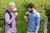 Fotografie winemakers smelling a glasses