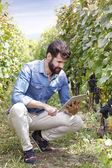 Fotografie winemaker holding digital tablet