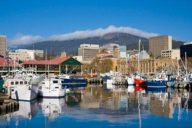 Hobart Dock and Mt Wellington