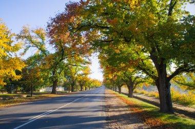 Maldon in Autumn