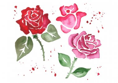 Red roses. Hand painted with watercolor.