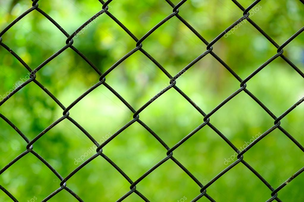 Schließen Sie Eisen-Draht-Zaun auf grünem Hintergrund isoliert ...