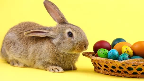 kleiner brauner, flauschiger Hase auf pastellgelbem Hintergrund mit einem hölzernen Korb voller verzierter Ostereier in Großaufnahme. Osterhase. Frühjahrsferienkonzept
