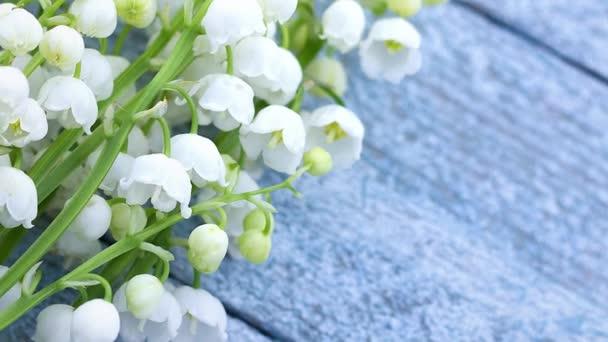 malé křehké voňavé bílé jarní květy lilie z údolí jako kytice leží na dřevěném světle modrém pozadí s místem pro nápis
