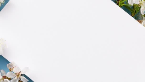 květinové větve na pastelovém pozadí ve studiu s bílým displejem uprostřed rámu, kopírovat prostor. Květinová plechovka pozadí, prázdné pro návrháře. Reklamní prostor, jarní koncept