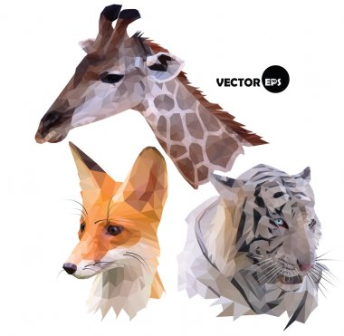 set of portraits of wild animals a giraffe, white tiger, red Fox realistic in polygonal ,low poly origami style.