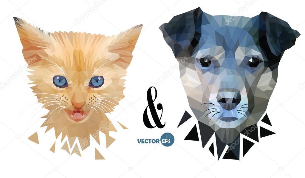 Fotos Gato Triangular Perro Y Gato Cara Retrato Mascotas Amor