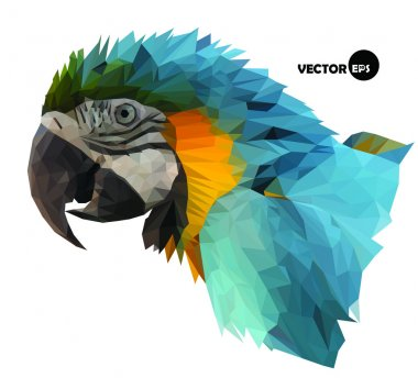 Macaw parrot head visual identity in low polygon